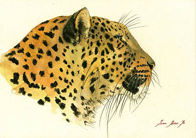 Jaguar Head Painting Watercolor Poster