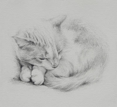 Kitty Poster by Rachel Christine Nowicki