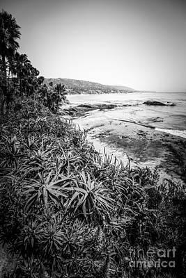 Laguna Beach Black And White Photo Poster by Paul Velgos
