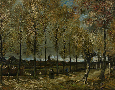 Lane With Poplars Near Nuenen Poster by Vincent van Gogh