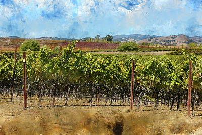 Napa Valley Vineyard In California Poster by Brandon Bourdages