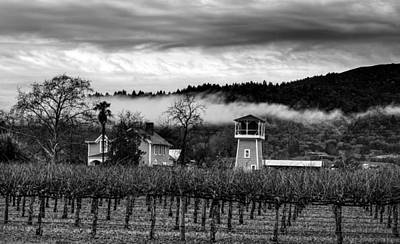 Napa Valley Vineyard On A Cloudy Day Poster