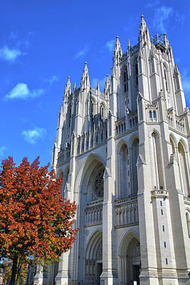 Poster featuring the photograph National Cathedral by Mitch Cat