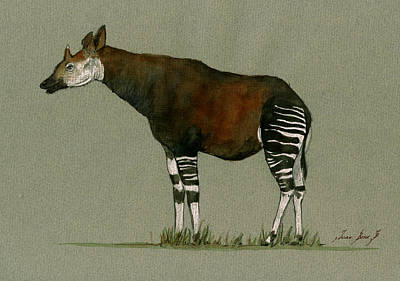 Okapi Art Watercolor Painting Poster