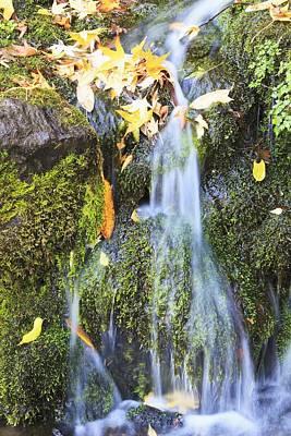 Oregon Cascades, Oregon, Usa Poster by Craig Tuttle