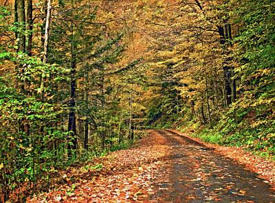Pennsylvania Back Road 3 Poster by Steve Harrington