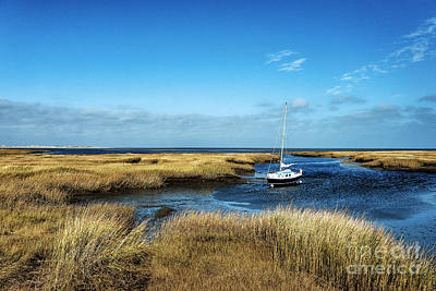 Salt Marsh Sailboat Poster