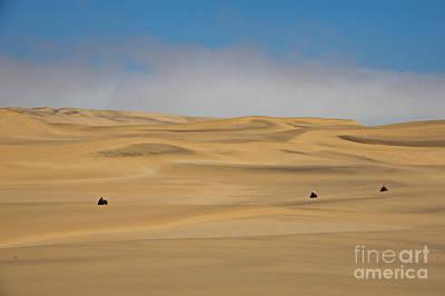 Sand Dunes In Namib Desert Poster