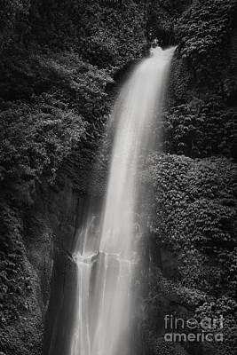 Sekumpul Waterfall Poster by Rod McLean