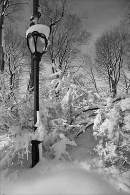Snow Storm 2 Poster by Robert Ullmann