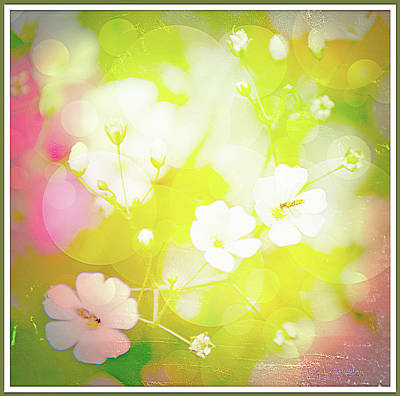 Summer Flowers, Baby's Breath, Digital Art Poster