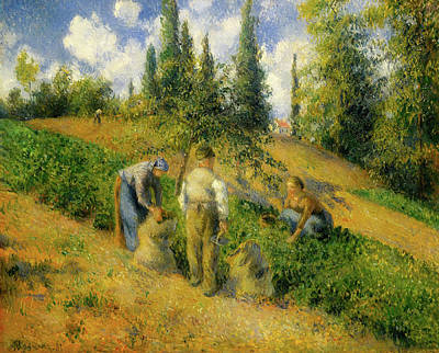 The Harvest, Pontoise Poster by Camille Pissarro