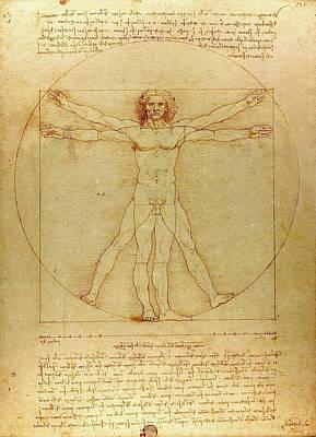The Vitruvian Man Poster by Leonardo da Vinci