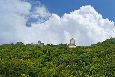 Tikal, Guatemala Poster by Marius Sipa
