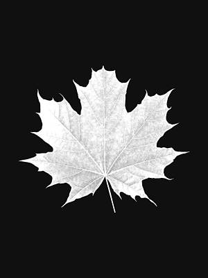 Tree Leaf Art Poster by Marvin Blaine