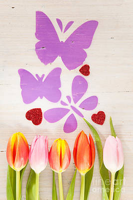 Tulips Butterflies And Hearts As Spring Courier Poster by Wolfgang Steiner