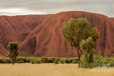 Poster featuring the photograph Uluru 08 by Werner Padarin