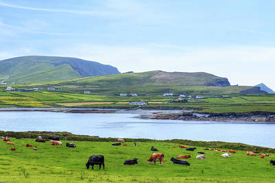 Valentia Island - Ireland Poster