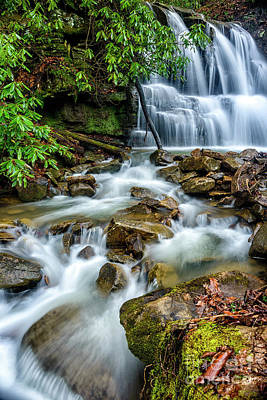 Waterfall And Rhododendron Poster