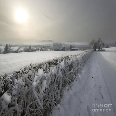 Wintery Landscape Poster by Angel  Tarantella