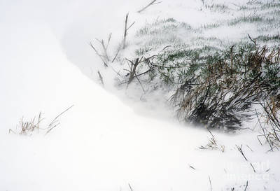 2010 Spring Snow Poster by Fred Lassmann