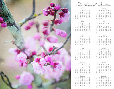 Poster featuring the photograph 2017 Wall Calendar Cherry Blossoms by Ivy Ho