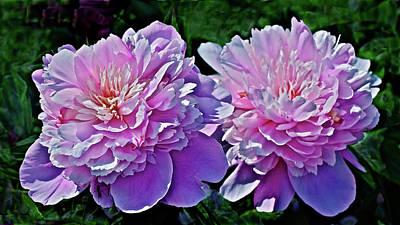 Poster featuring the photograph 2018 Anniversary Peonies by Janis Nussbaum Senungetuk