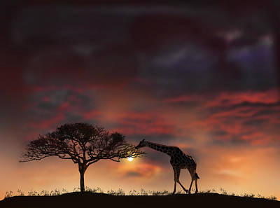 2200 Poster by Peter Holme III