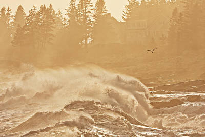 Pemaquid Point Maine Large Waves Poster by Keith Webber Jr