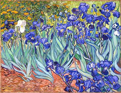 Poster featuring the painting Irises by Vincent Van Gogh