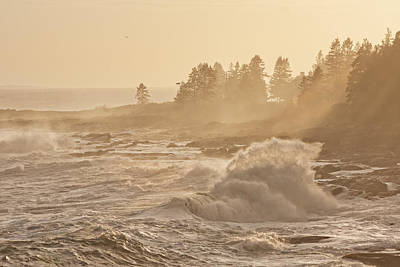Pemaquid Point Maine Waves Poster by Keith Webber Jr