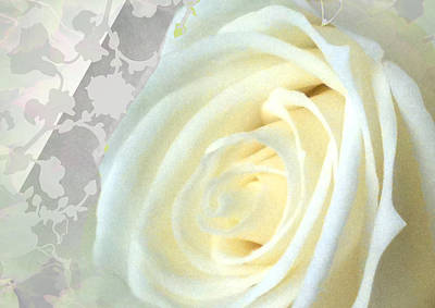 Wedding Rose Collection  Poster by Debra     Vatalaro
