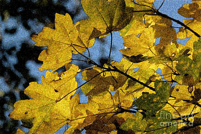Poster featuring the photograph Autumn Leaves by Jean Bernard Roussilhe