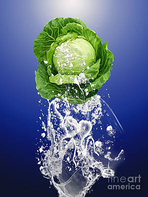 Cabbage Splash Poster by Marvin Blaine