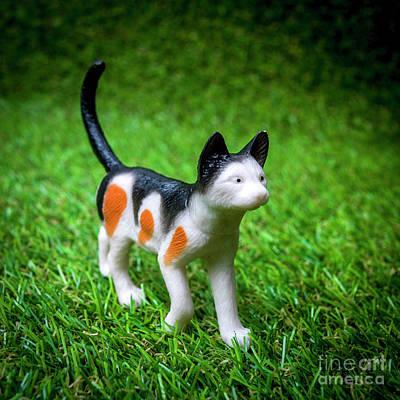 Cat Figurine Poster by Bernard Jaubert
