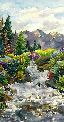 Colorado Waterfall Poster by Anne Gifford