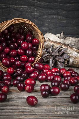Cranberries In Basket Poster by Elena Elisseeva