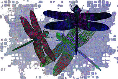 3 Dragonfly Poster