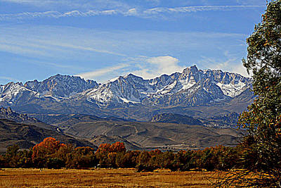 Eastern Sierras Poster by Lynn Bawden