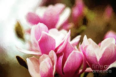 Japanese Magnolia Poster by Scott Pellegrin