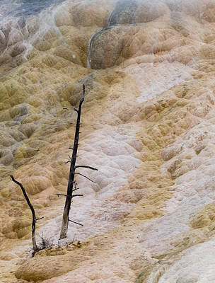 Mammoth Hot Spring Terraces Poster