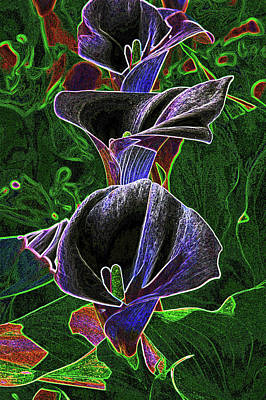 3 Neon Calla Lillies Poster