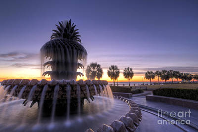 Pineapple Fountain Charleston Sc Sunrise Poster by Dustin K Ryan
