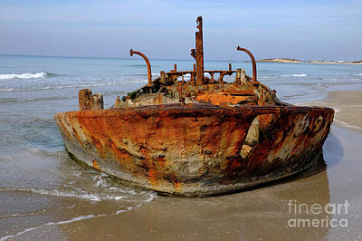 Rusty Abandoned Beached Ship  Poster by Ofer Zilberstein