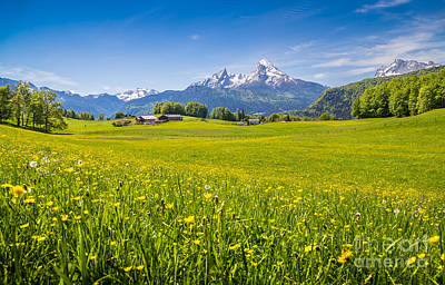 Springtime In The Alps Poster by JR Photography