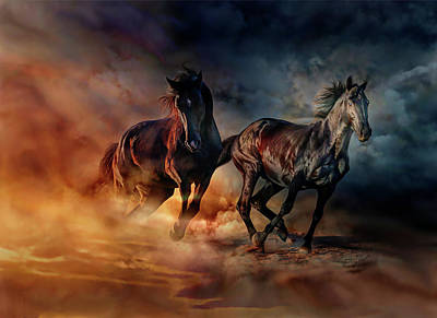 Two Horses Poster by Lilia D