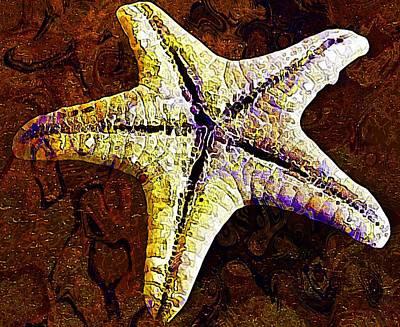 Underwater. Starfish. Poster
