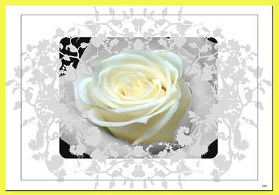 Wedding Rose Collection  Poster