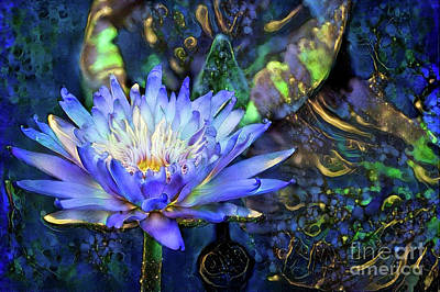 Jeweled Water Lilies Poster