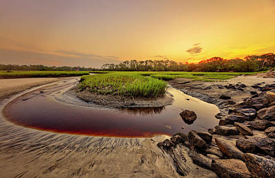 Poster featuring the photograph Big Talbot Island by Peter Lakomy
